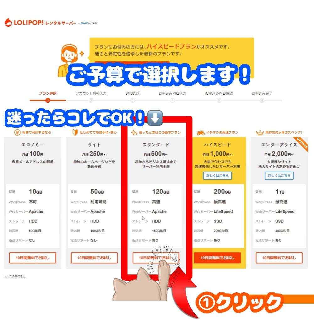 ロリポップサーバー契約_02