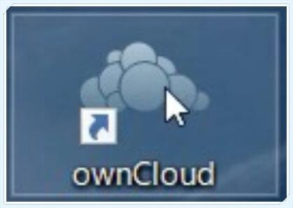 c-own_c_ins-010