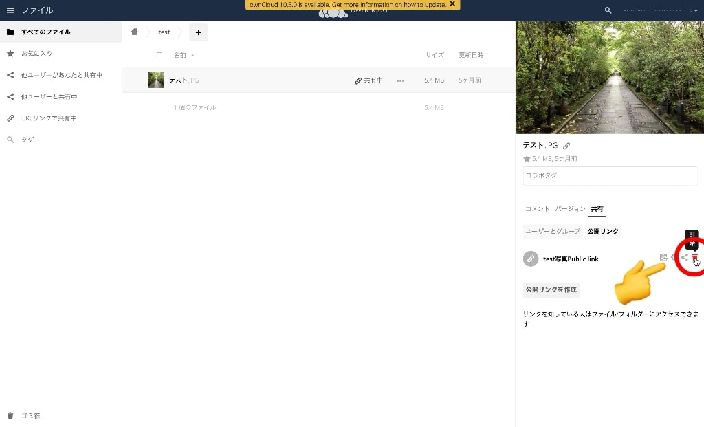 owncloud-link-del-file_01