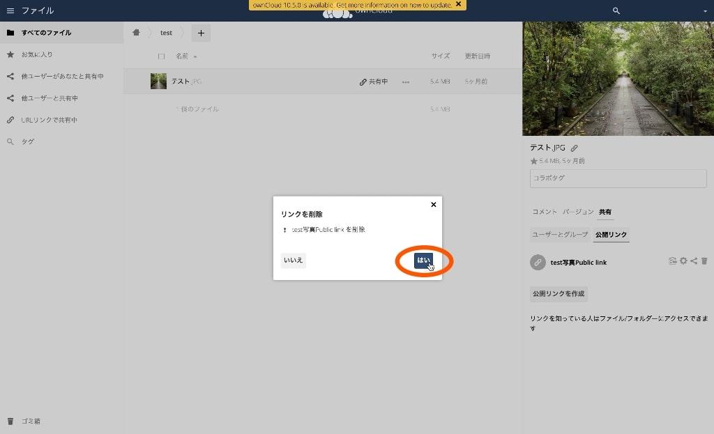 owncloud-link-del-file_02