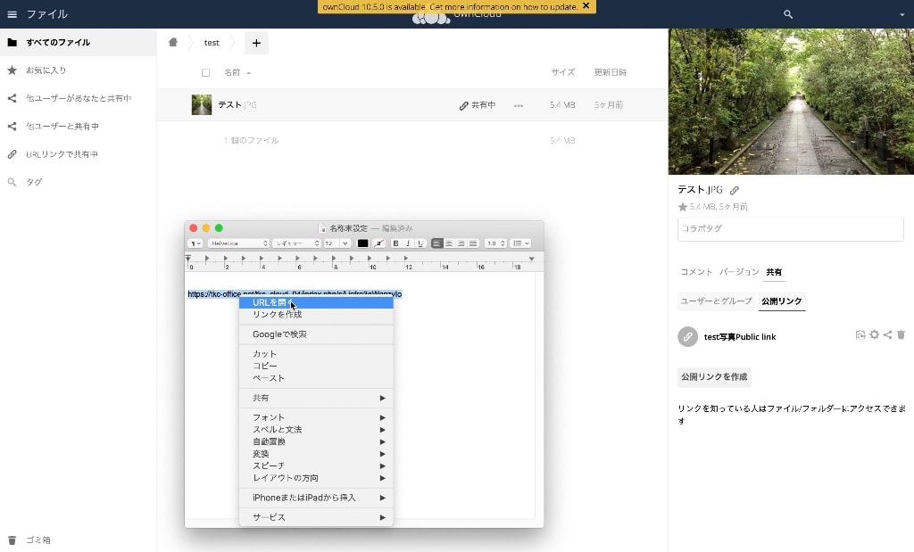 owncloud-link-file_06